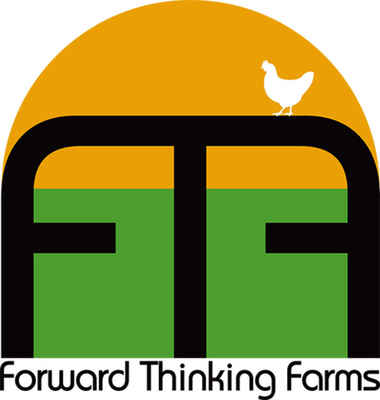Ftf-logo-final-color-chicken